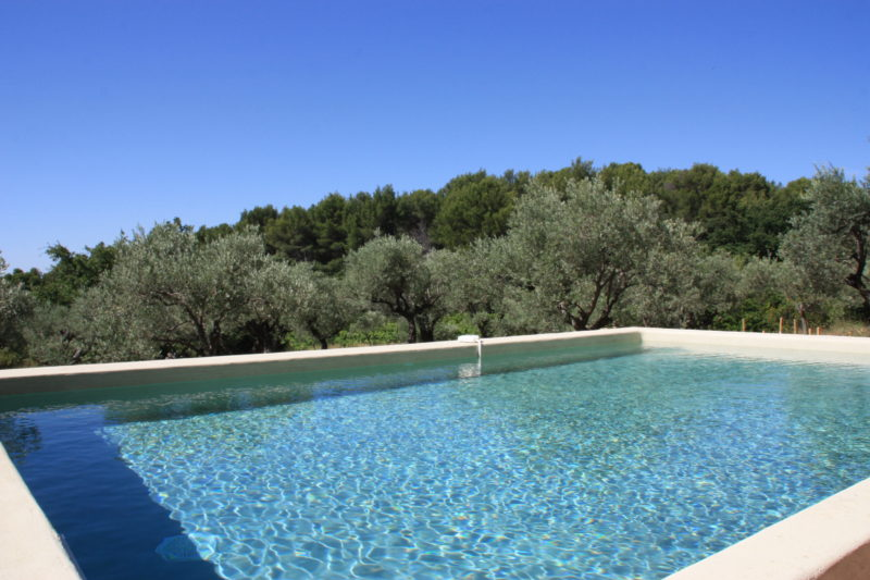 Piscine au coeur des oliviers
